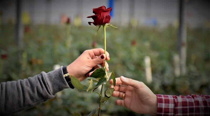 Свети Валентин – празник на любовта